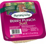 Morning Song Berry Punch Suet
